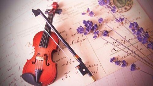 ドラマ「G線上のあなたと私」主演は波瑠 大人のバイオリン教室、原作はいくえみ綾